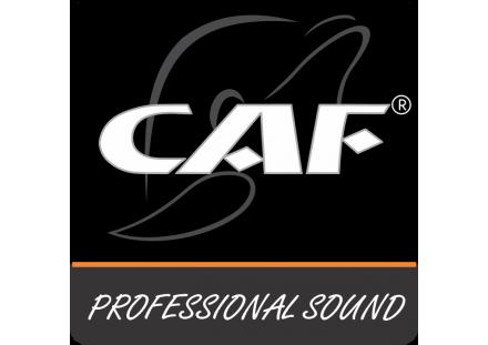 Bộ xử lý tín hiệu CAF Audio